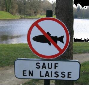 private-category-poisson-interdit-laisse-img[1]